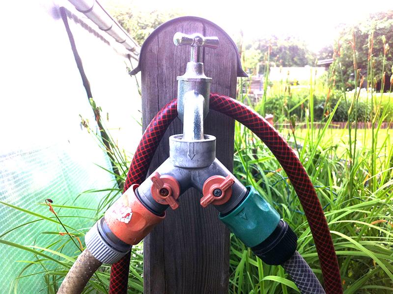 Rasen bewässern - Wie viel Wasser braucht der Rasen?