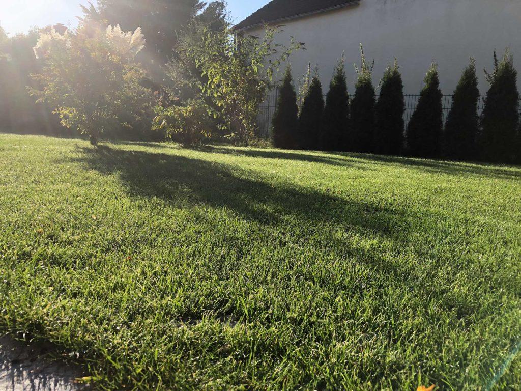 Rasenpflege im Herbst - Wie Sie Ihren Rasen winterfest machen