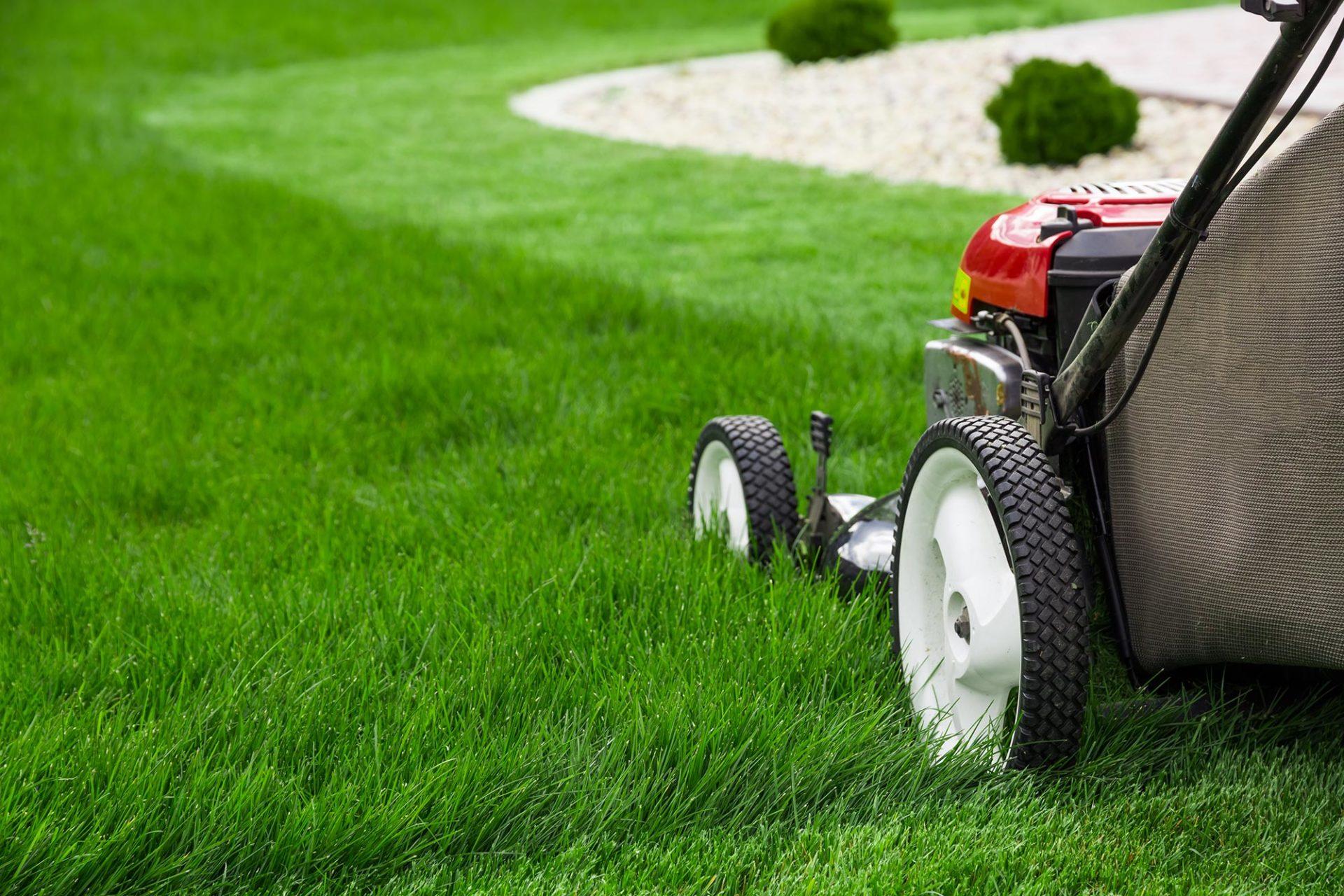 Ruhezeiten beim Rasenmähen